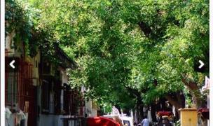 Beijing-Dongcheng-Long & Short Term,Seeking Flatmate,Replacement,LGBT Friendly 🏳️🌈,Pet Friendly,Shared Apartment