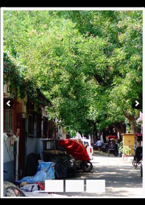 Beijing-Dongcheng-Hutong,Line 8,Shared Apartment,Seeking Flatmate