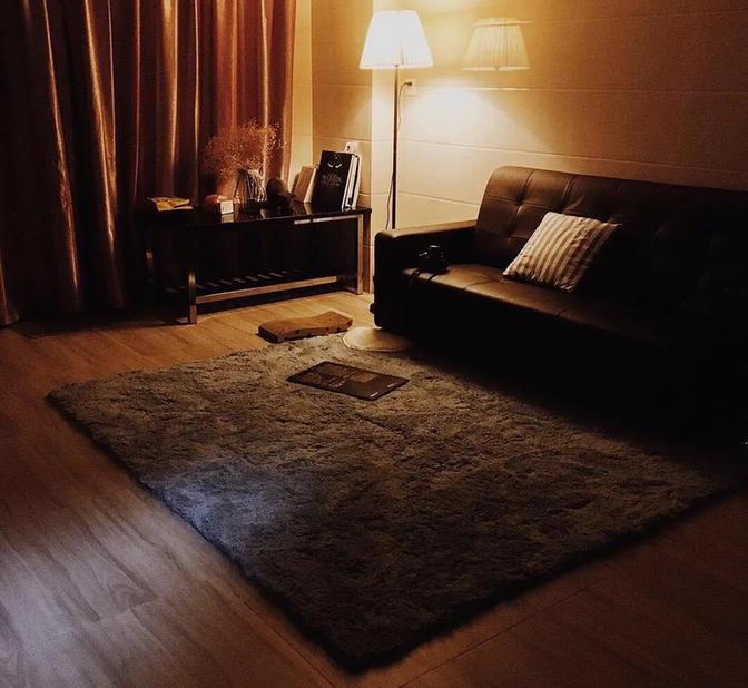 Long & Short Term-Seeking Flatmate-Shared Apartment-Pet Friendly
