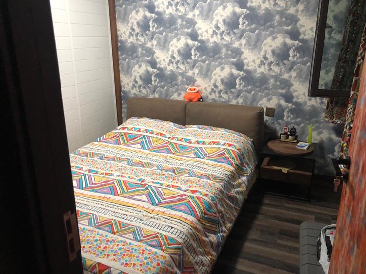 Beijing-Chaoyang-👯♀️,Cat lover,Short Term,Seeking Flatmate,Pet Friendly,Shared Apartment