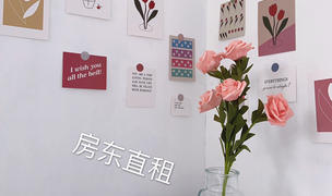 Beijing-Fengtai-Cat Lover,LGBT Friendly 🏳️🌈