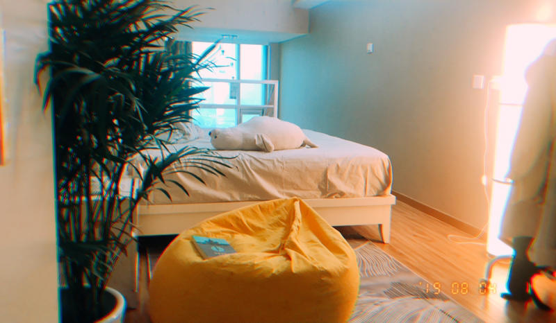 Beijing-Chaoyang-Single Apartment,Pet Friendly,LGBT Friendly 🏳️‍🌈,🏠