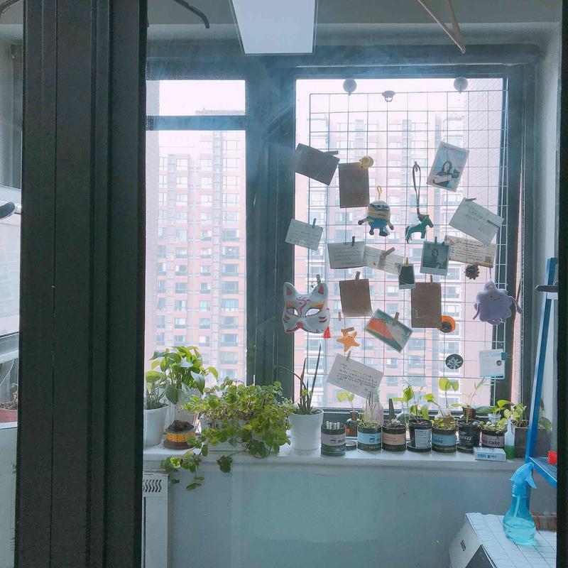 Beijing-Chaoyang-👯♀️,Cat lover,ShuangJing,Seeking Flatmate,Shared Apartment