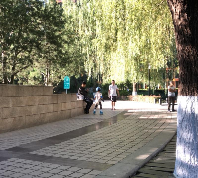 Beijing-Dongcheng-3 Bedrooms,Single Apartment,Long & Short Term
