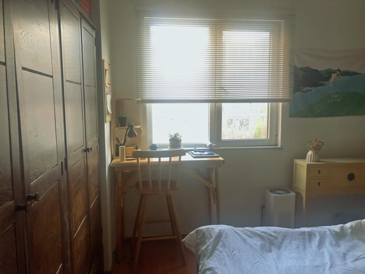 Beijing-Chaoyang-Seeking Flatmate,Replacement,Shared Apartment,LGBT Friendly 🏳️‍🌈,Pet Friendly