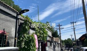 Beijing-Dongcheng-Hutong,Long & Short Term,Seeking Flatmate,Replacement,LGBT Friendly 🏳️🌈,Pet Friendly,Shared Apartment