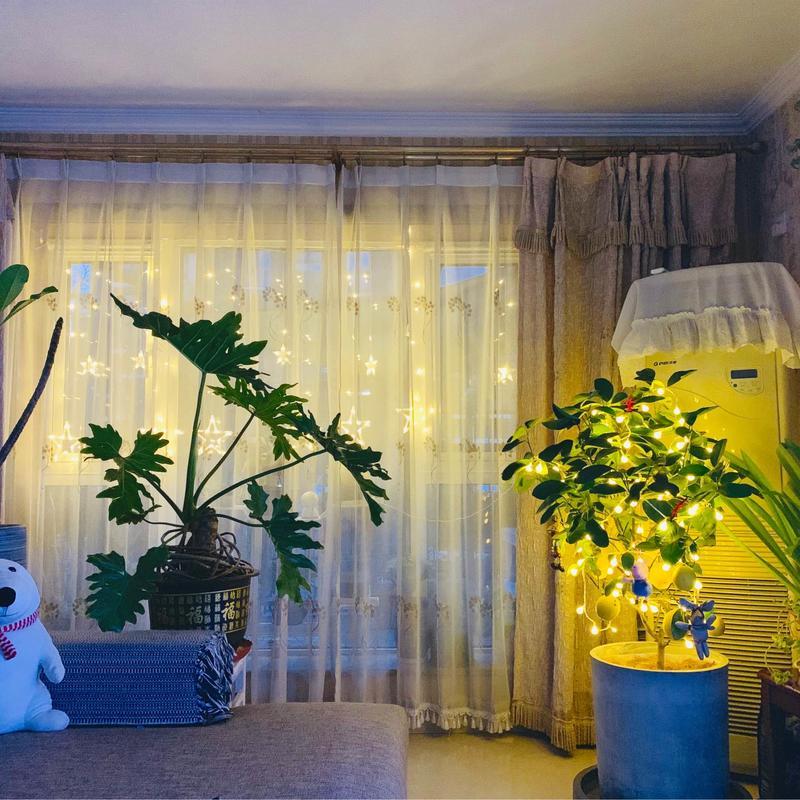Beijing-Tongzhou-Seeking Flatmate,Shared Apartment,Pet Friendly,👯♀️
