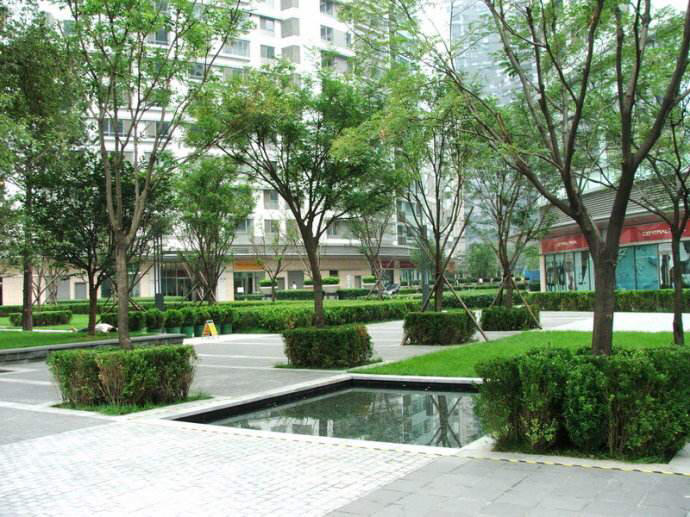 Beijing-Chaoyang-Sublet,Shared Apartment,Long & Short Term