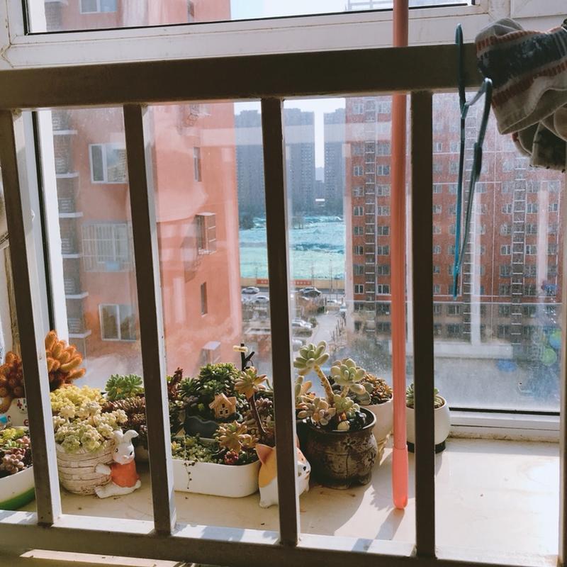 Beijing-Fengtai-Line 9,Seeking Flatmate,Shared Apartment