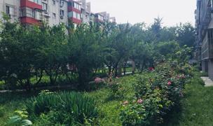 Beijing-Chaoyang-Seeking Flatmate