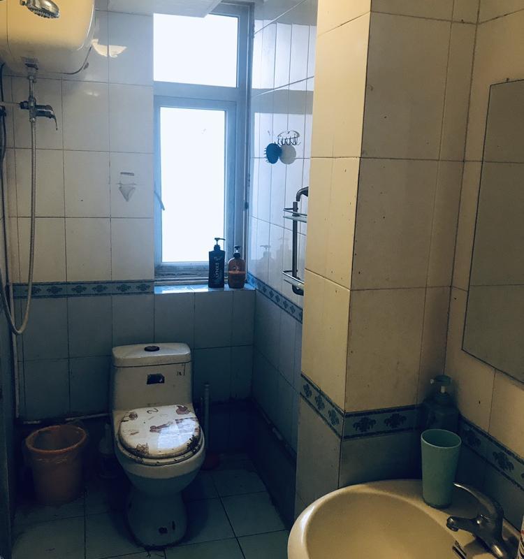 Beijing-Chaoyang-Seeking Flatmate,LGBT Friendly 🏳️🌈,Pet Friendly,Shared Apartment