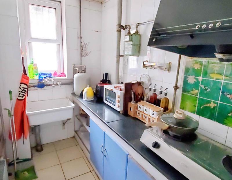 Beijing-Chaoyang-Honglingjin Park,Seeking Flatmate,Shared Apartment,LGBT Friendly 🏳️🌈,Pet Friendly