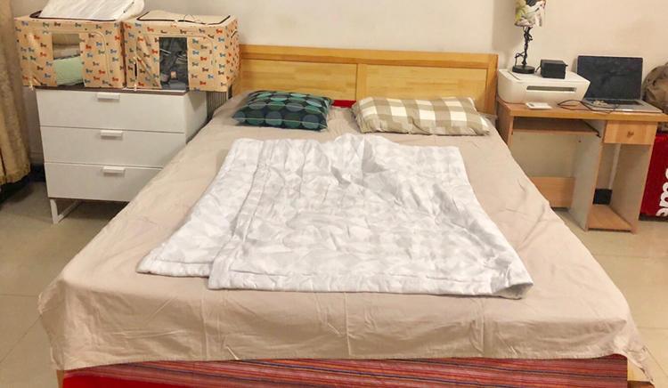 Beijing-Haidian-Shared Apartment,Pet Friendly,Long & Short Term,👯♀️