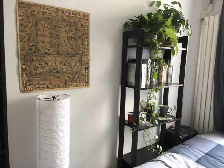 Beijing-Dongcheng-Hutong,expat location,Shared apartment
