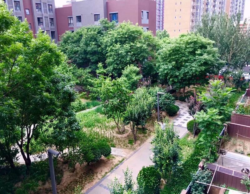 Beijing-Fangshan-Fangshan,非中介,房东直租,Shared Apartment