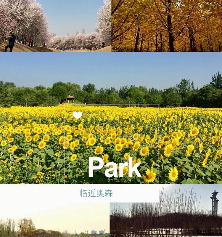 Beijing-Haidian-Shared Apartment,Seeking Flatmate,LGBT Friendly 🏳️🌈