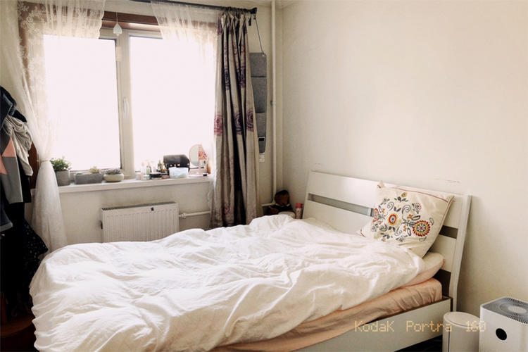 Beijing-Chaoyang-Cat lover,👯♀️,找室友,宠物友好