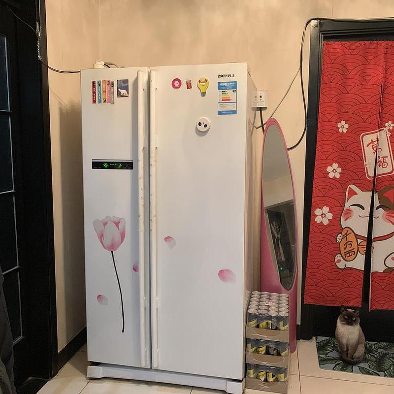 Beijing-Chaoyang-Cat lover,Shared Apartment,Seeking Flatmate,👯♀️