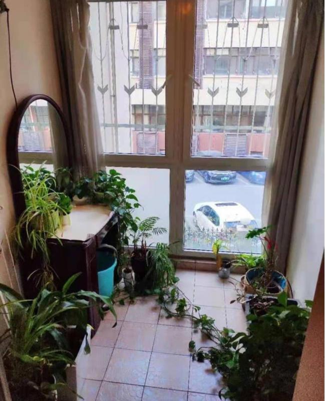 Beijing-Chaoyang-Sanlitun,Long & Short Term,Sublet,Replacement,Shared Apartment,LGBTQ Friendly