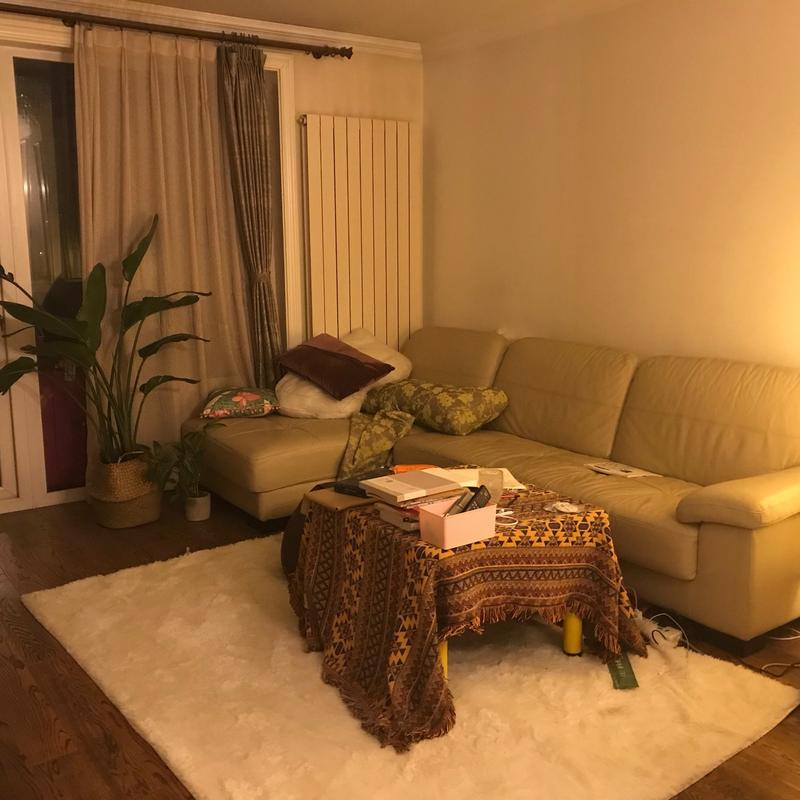 Beijing-Chaoyang-Line 6,Shared apartment,Pet Friendly