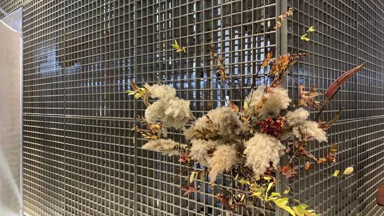 Flowers & Art & Thanksgiving | 一次花艺的遇见感恩节快乐♥️很高兴遇见🌈