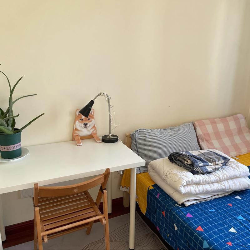 Beijing-Chaoyang-CBD,Line 14,👯♀️,Shared Apartment,LGBTQ Friendly,Long & Short Term,Seeking Flatmate,Pet Friendly