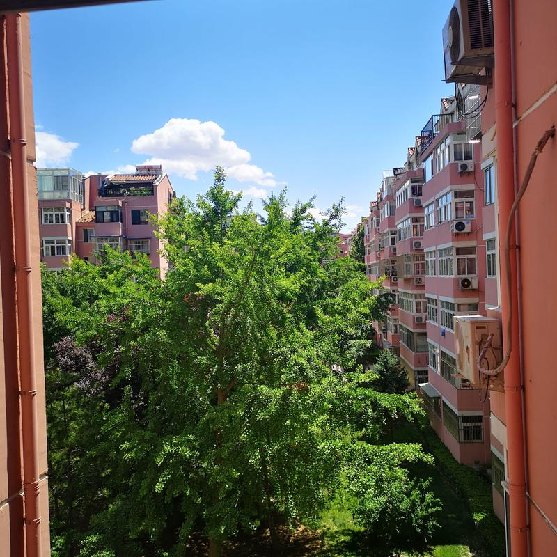 Beijing-Chaoyang-Line 1 & Line 6,👯♀️,Long & Short Term,Sublet,Shared Apartment