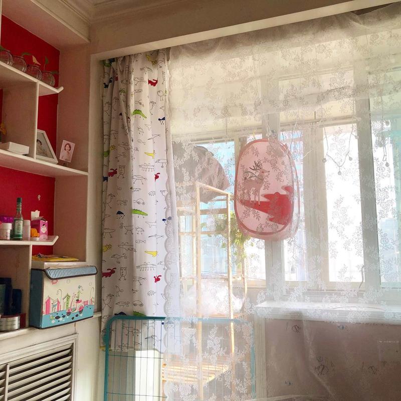 Beijing-Chaoyang-Short Term,LGBT Friendly 🏳️🌈,Long & Short Term,Single Apartment,🏠