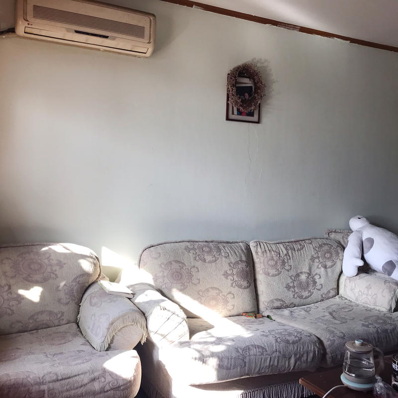 Beijing-Chaoyang-2 Bedrooms,Single Apartment,Pet Friendly,Replacement,LGBT Friendly 🏳️🌈