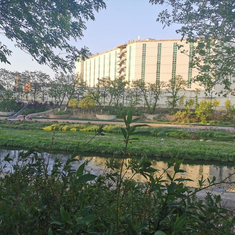 Beijing-Fengtai-Fengtai ,🏠,👯♀️,Replacement,Shared Apartment,Sublet