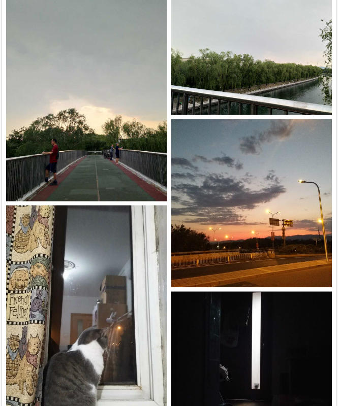 Beijing-Haidian-👯♀️,Line 10,Sublet,Shared Apartment,Pet Friendly